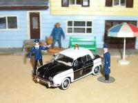 Dauphinepolice